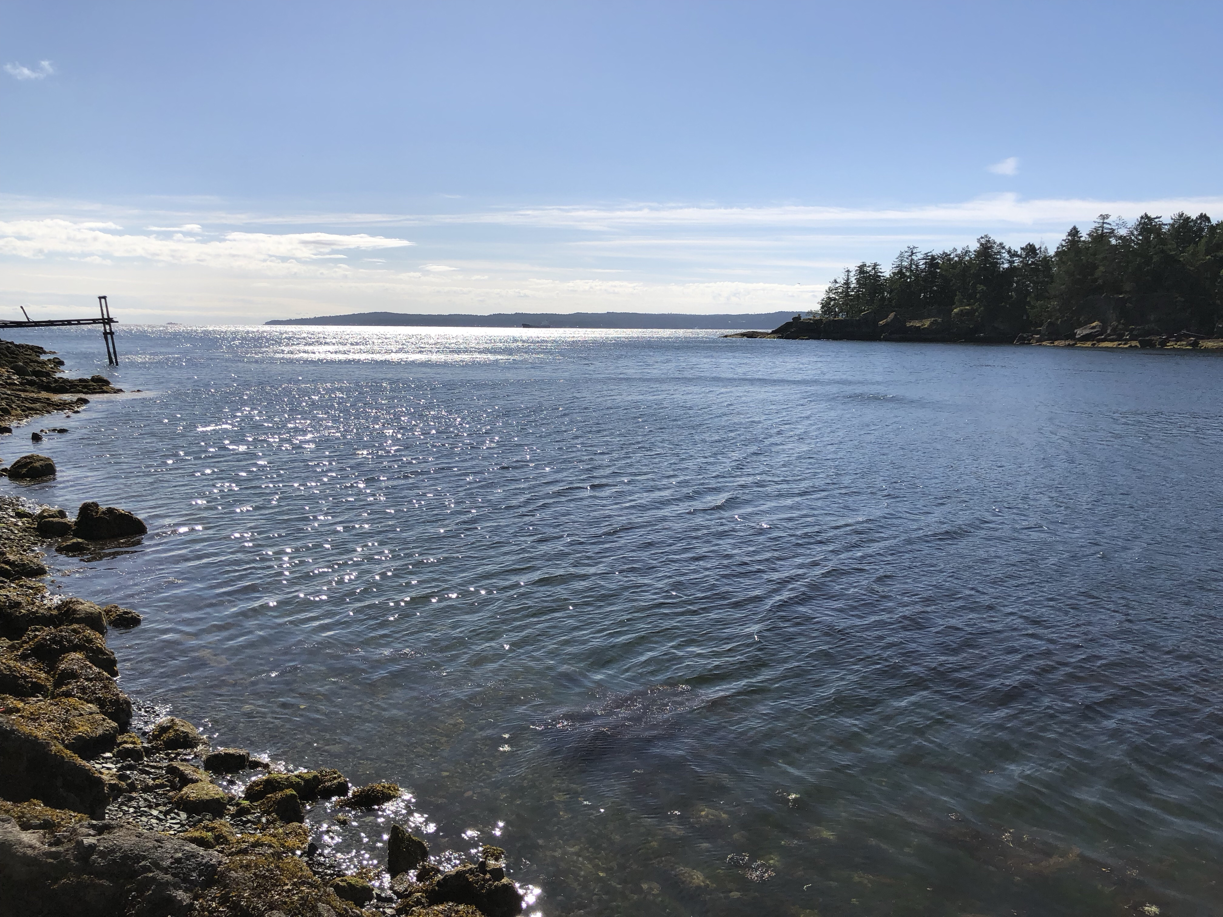 The view looking out towards Entrance Island and Vancouver from Stephenson Point in Departure Bay