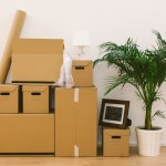 Packing Tips Nanaimo Real Estate