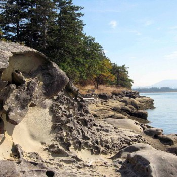 The Best Walking Trails In Nanaimo