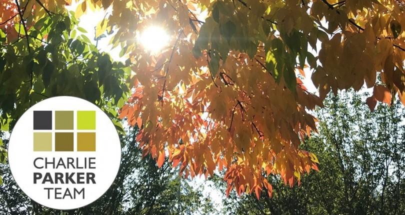 September Blog – Fall Festivities